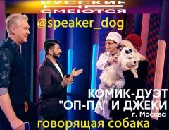 my-russkie0